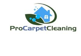 Pro Carpet Cleaning Swansea