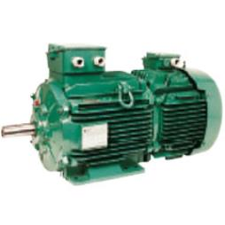 E.M.G. Electric Motors