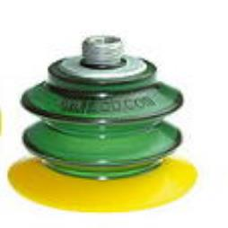 Multibellow Suction Cups