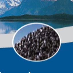 CAL® and CAL® I Carbons