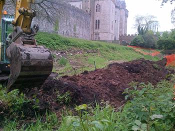Japanese Knotweed Excavation Works Cardiff Castle