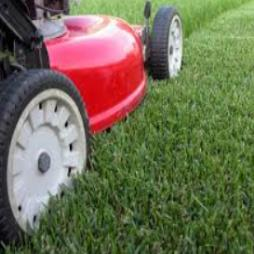 Lawn Mowing Service Kent