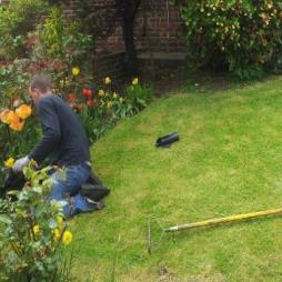 Water Garden Services Kent