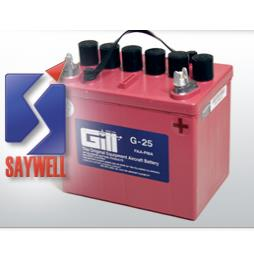 Teledyne Gill Batteries