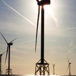 Quality Asset Integrity Solutions for Renewable Energy Sector
