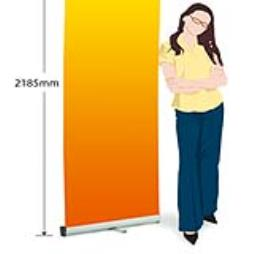 Zeta Best Selling Roll Up Banner Stand