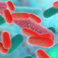 Bacteriological and Legionella analysis