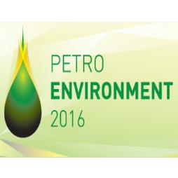 Petroleum and Petrochemical Industry International Conference