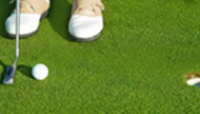 Professional Putting Green Grass