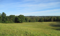 Habitat Creation and Management In East Sussex