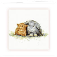 Rabbit and Guinea Pig Cards