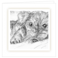 New Puppy Bereavement Cards