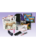 AAH Light - Complete Equine Package - Red Light