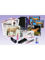 AAH Light - Deluxe Equine Package - BLUE Head