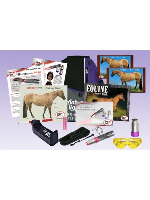 AAH Light - Deluxe Equine Package - UV Head