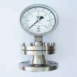 Diaphragm Bolted Seal Gauge