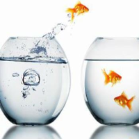 Managing Change In Company Training In Manchester