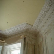 Fibrous Plaster Products