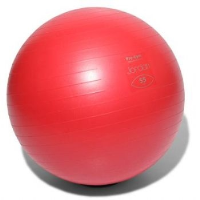 FIT BALL 55CM