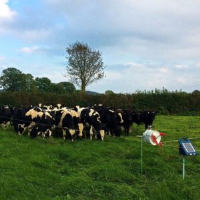 Dairy Grazing Fencing Kit Suppliers