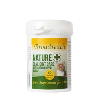 Joint Care Supplements For Cats