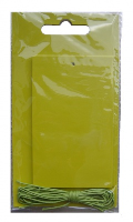 Pack 10 Gift Tags with Ties - APPLE GREEN