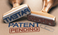 Specialist Patent Search Solutions