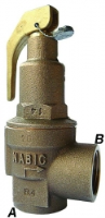Nabic Safety Relief Valve - Fig 542