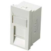 Excel 100-300 Category 6 Unscreened RJ45 Module In White
