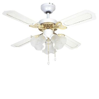 "Global 36"" Rio Ceiling Fan In White And Brass With 3 Lights And Reversible White/White And Cane Blades"