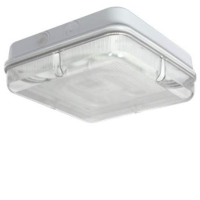 White/Prismatic IP65 High Frequency Emergency Version Square 28w 2D Bulkhead Light